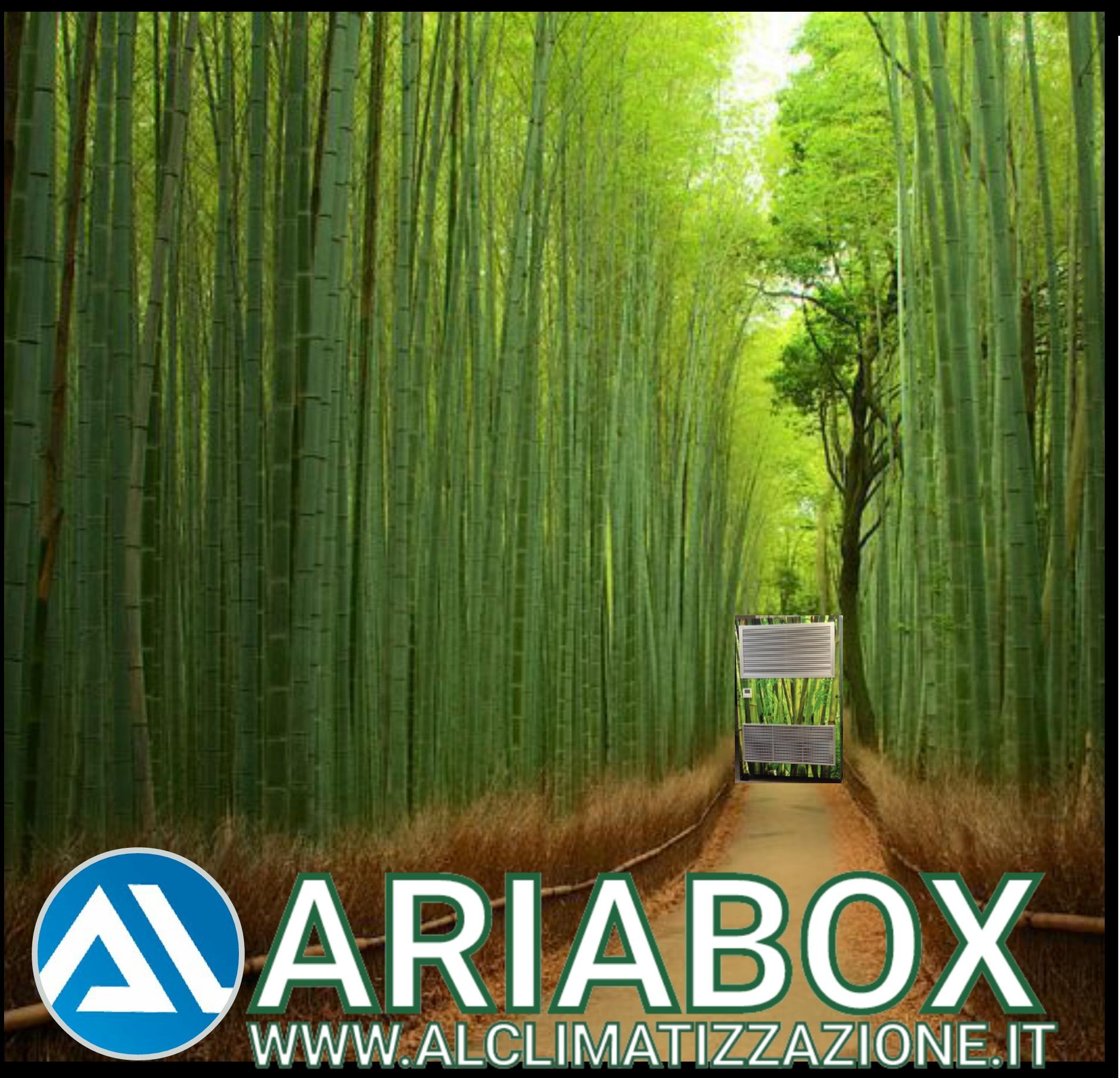 Ecco come trasforma il tuo ambiente di lavoro ARIABOX