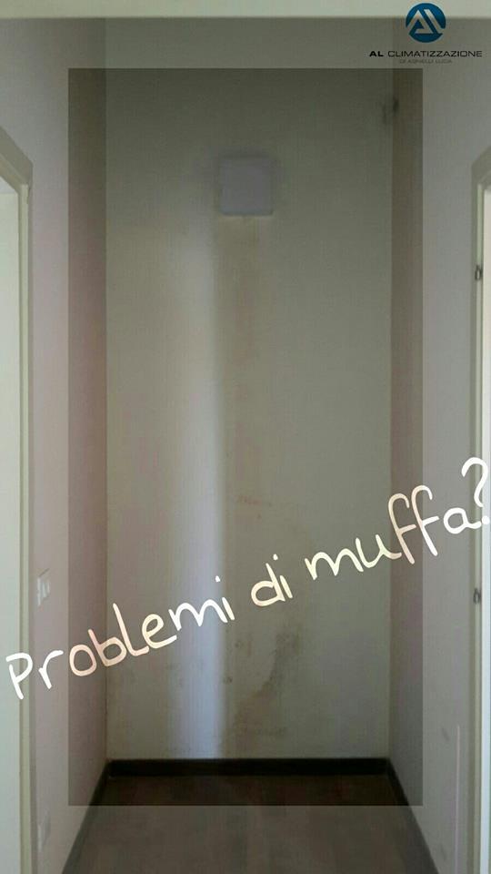Soluzioni contro la muffa e condensa in casa a brescia e - Muffa e umidita in casa ...